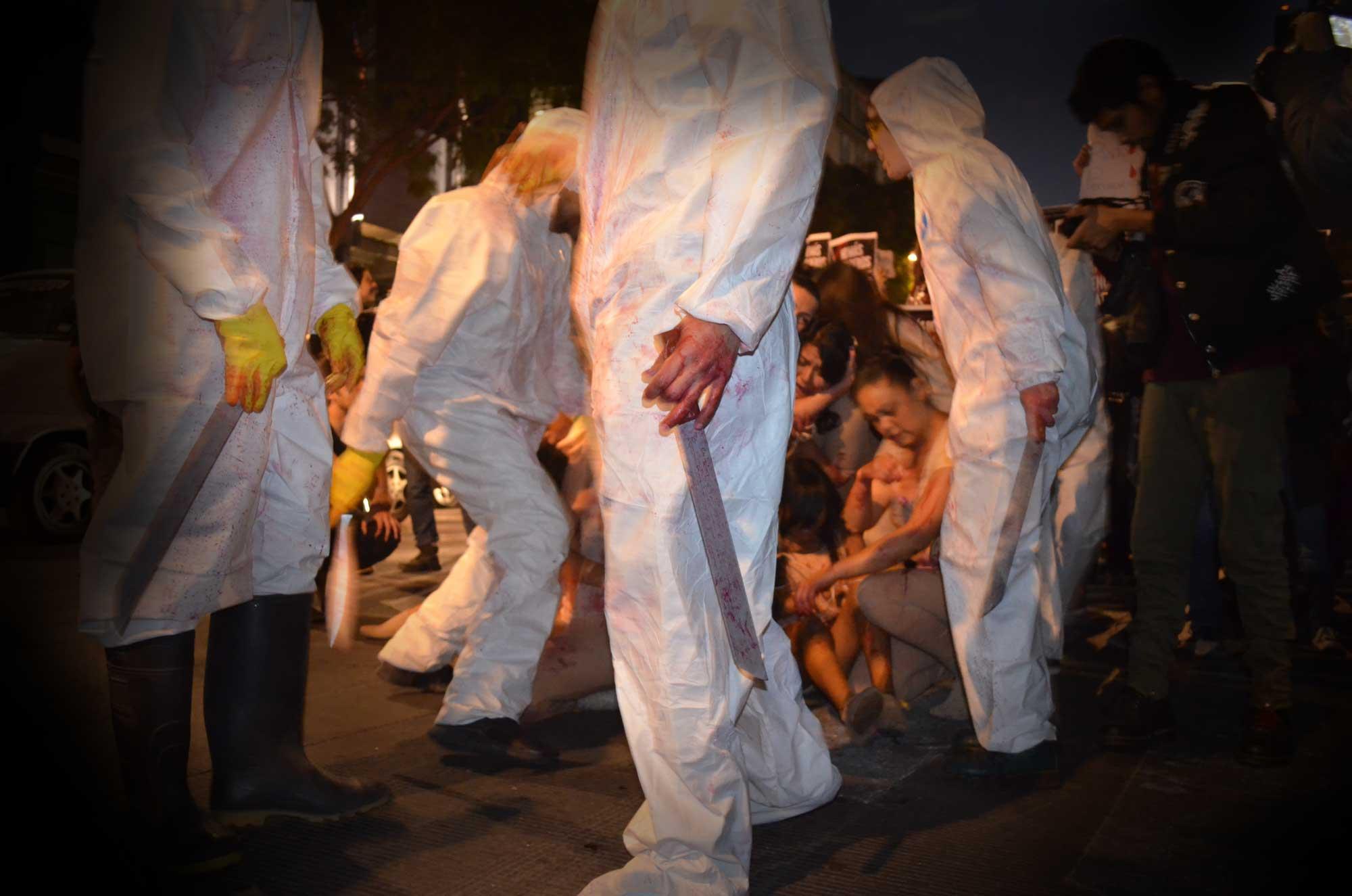 Marcha Contra Los Mataderos