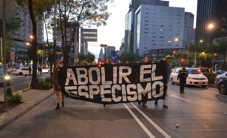 Marcha Por El Cierre De Los Mataderos CDMX